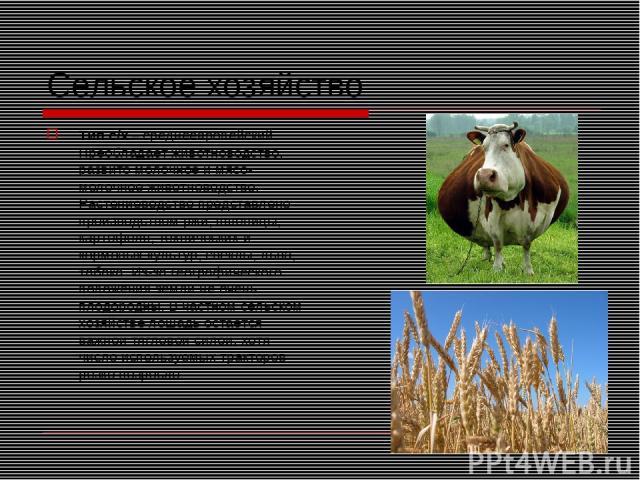 Сельское хозяйство Тип с/х – среднеевропейский. Преобладает животноводство, развито молочное и мясо-молочное животноводство. Растениеводство представлено производством ржи, пшеницы, картофеля, технических и кормовых культур, свеклы, льна, табака. Из…