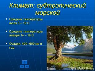 Климат: субтропический морской Средние температуры июля 5 – 12 С Средние темпера