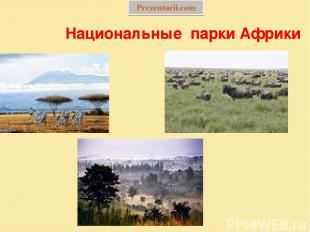 Национальные парки Африки Prezentacii.com