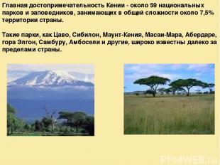 Главная достопримечательность Кении - около 59 национальных парков и заповеднико