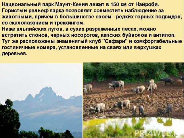 Национальный парк Маунт-Кения лежит в 150 км от Найроби. Гористый рельеф парка позволяет совместить наблюдение за животными, причем в большинстве своем - редких горных подвидов, со скалолазанием и треккингом. Ниже альпийских лугов, в сухих разреженн…