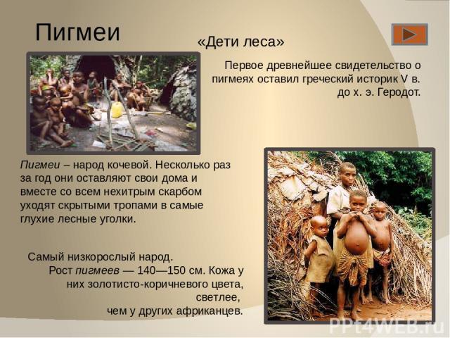 Пигмеи Первое древнейшее свидетельство о пигмеях оставил греческий историк V в. до х. э. Геродот. Самый низкорослый народ. Рост пигмеев — 140—150 см. Кожа у них золотисто-коричневого цвета, светлее, чем у других африканцев. «Дети леса» Пигмеи – наро…