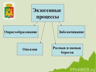 Экзогенные процессы Размыв и намыв берегов Оврагообразование Оползни Заболачиван