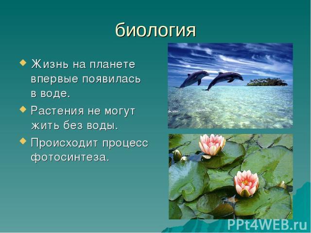 биология Жизнь на планете впервые появилась в воде. Растения не могут жить без воды. Происходит процесс фотосинтеза.