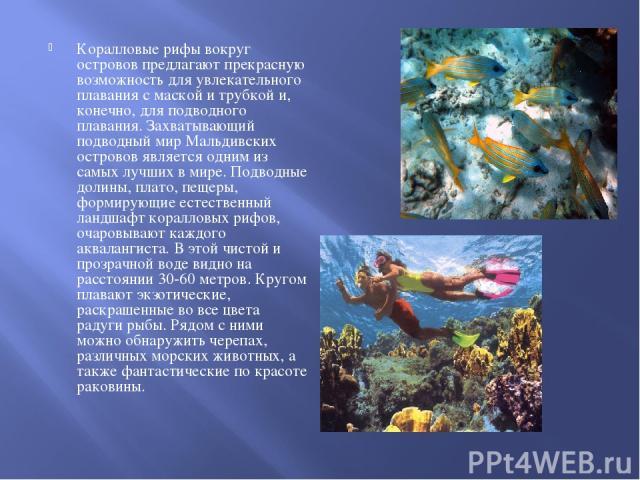 Коралловые рифы вокруг островов предлагают прекрасную возможность для увлекательного плавания с маской и трубкой и, конечно, для подводного плавания. Захватывающий подводный мир Мальдивских островов является одним из самых лучших в мире. Подводные д…