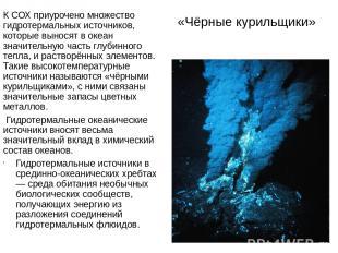 «Чёрные курильщики» К СОХ приурочено множество гидротермальных источников, котор
