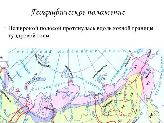 Неширокой полосой протянулась вдоль южной границы тундровой зоны. Географическое положение
