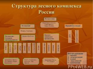 Структура лесного комплекса России Карпогоры, Соликамск, Серов, Иркутск, Канск,