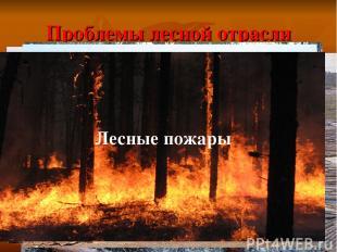 Проблемы лесной отрасли Истощение запасов древесины Молевой сплав леса Отходы в