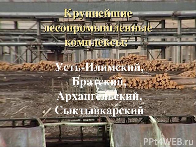 Крупнейшие лесопромышленные комплексы: Усть-Илимский, Братский, Архангельский, Сыктывкарский