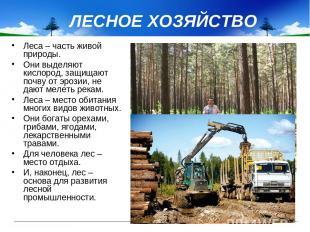 ЛЕСНОЕ ХОЗЯЙСТВО Леса – часть живой природы. Они выделяют кислород, защищают поч
