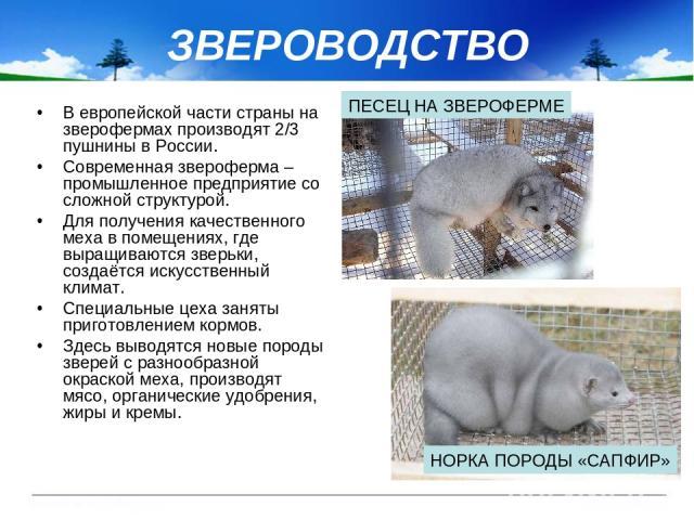 ЗВЕРОВОДСТВО В европейской части страны на зверофермах производят 2/3 пушнины в России. Современная звероферма – промышленное предприятие со сложной структурой. Для получения качественного меха в помещениях, где выращиваются зверьки, создаётся искус…
