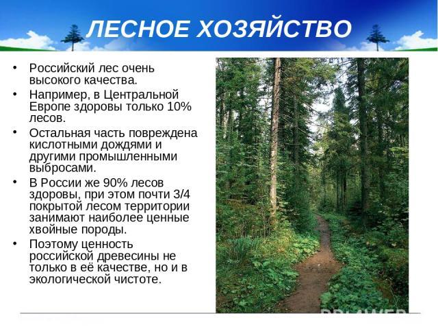 ЛЕСНОЕ ХОЗЯЙСТВО Российский лес очень высокого качества. Например, в Центральной Европе здоровы только 10% лесов. Остальная часть повреждена кислотными дождями и другими промышленными выбросами. В России же 90% лесов здоровы, при этом почти 3/4 покр…