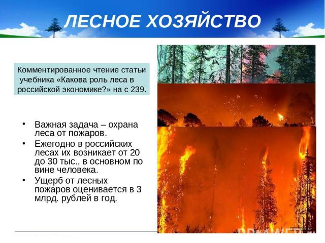 ЛЕСНОЕ ХОЗЯЙСТВО Важная задача – охрана леса от пожаров. Ежегодно в российских лесах их возникает от 20 до 30 тыс., в основном по вине человека. Ущерб от лесных пожаров оценивается в 3 млрд. рублей в год. Комментированное чтение статьи учебника «Как…