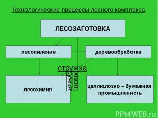 Технологические процессы лесного комплекса. ЛЕСОЗАГОТОВКА лесопиление деревообра