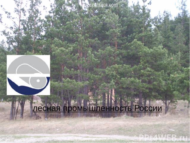лесная промышленность России Prezentacii.com