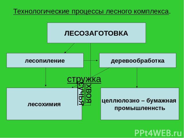 Технологические процессы лесного комплекса. ЛЕСОЗАГОТОВКА лесопиление деревообработка лесохимия целлюлозно – бумажная промышленнсть стружка сучья хвоя