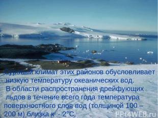 Суровый климат этих районов обусловливает низкую температуру океанических вод. В