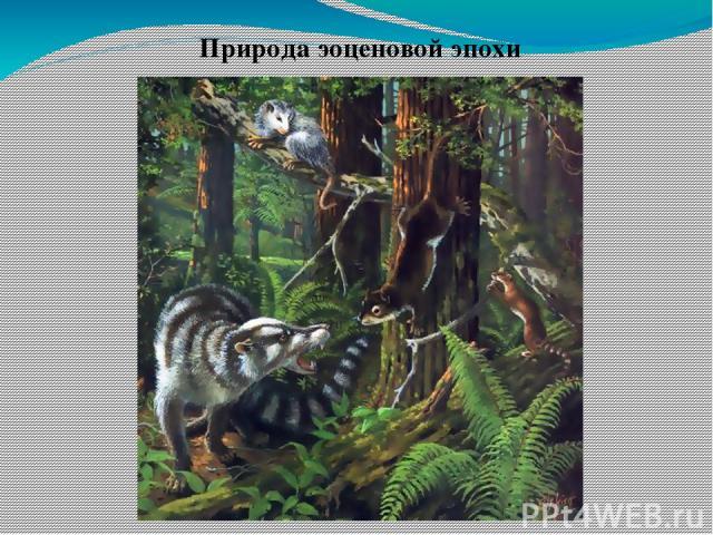 Природа эоценовой эпохи