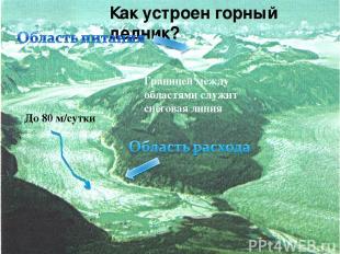 Как устроен горный ледник? До 80 м/сутки Границей между областями служит снегова