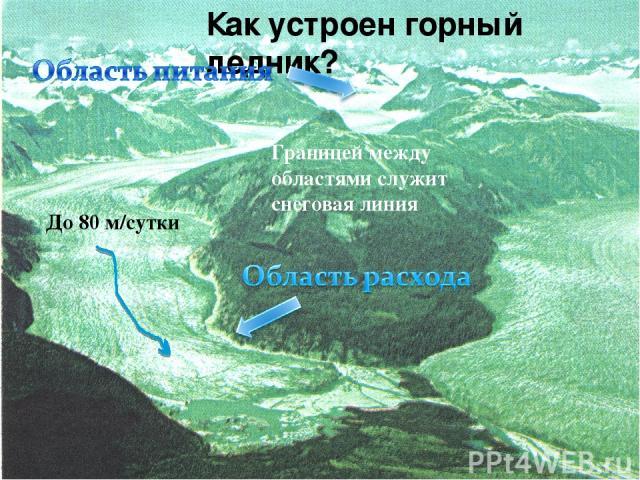 Как устроен горный ледник? До 80 м/сутки Границей между областями служит снеговая линия