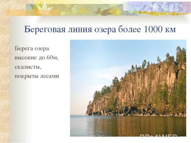 Береговая линия озера более 1000 км Берега озера высокие до 60м, скалисты, покрыты лесами