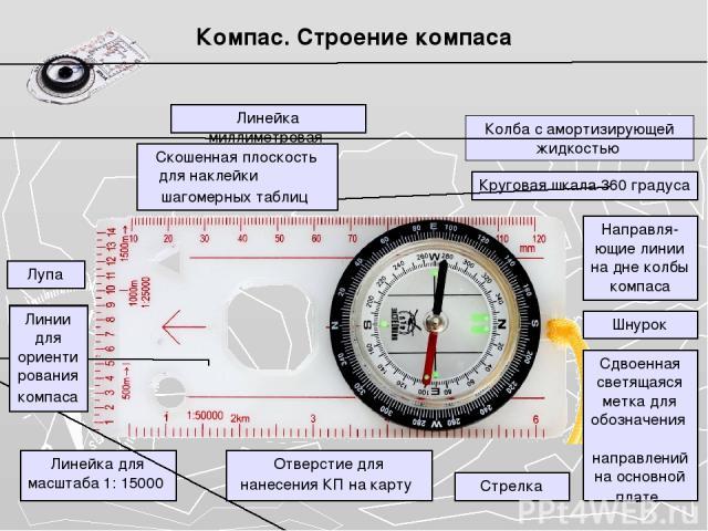 Компас. Строение компаса Колба с амортизирующей жидкостью Круговая шкала 360 градуса Направля-ющие линии на дне колбы компаса Шнурок Сдвоенная светящаяся метка для обозначения направлений на основной плате Стрелка Отверстие для нанесения КП на карту…