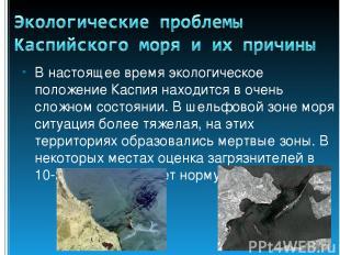 В настоящее время экологическое положение Каспия находится в очень сложном состо