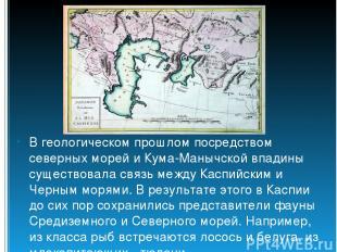 В геологическом прошлом посредством северных морей и Кума-Манычской впадины суще