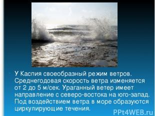 У Каспия своеобразный режим ветров. Среднегодовая скорость ветра изменяется от 2