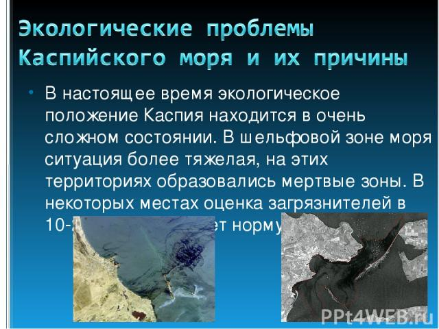 В настоящее время экологическое положение Каспия находится в очень сложном состоянии. В шельфовой зоне моря ситуация более тяжелая, на этих территориях образовались мертвые зоны. В некоторых местах оценка загрязнителей в 10-20 раз превышает норму.
