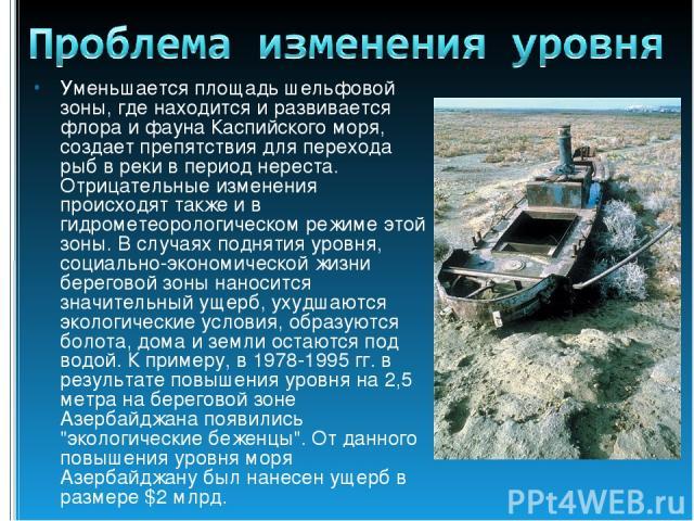 Уменьшается площадь шельфовой зоны, где находится и развивается флора и фауна Каспийского моря, создает препятствия для перехода рыб в реки в период нереста. Отрицательные изменения происходят также и в гидрометеорологическом режиме этой зоны. В слу…