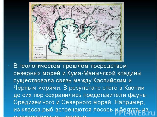 В геологическом прошлом посредством северных морей и Кума-Манычской впадины существовала связь между Каспийским и Черным морями. В результате этого в Каспии до сих пор сохранились представители фауны Средиземного и Северного морей. Например, из клас…