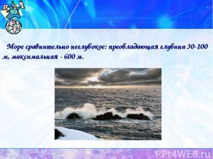 Море сравнительно неглубокое: преобладающая глубина 30-100 м, максимальная - 600