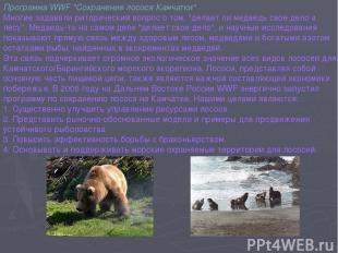 """Программа WWF """"Сохранение лосося Камчатки"""" Многие задавали риторический вопрос о"""