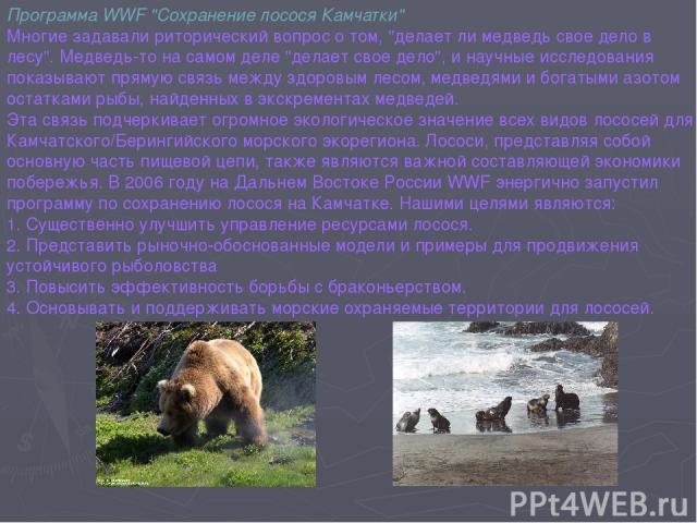 Программа WWF