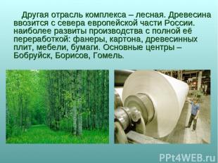 Другая отрасль комплекса – лесная. Древесина ввозится с севера европейской части