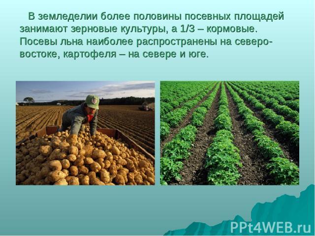 В земледелии более половины посевных площадей занимают зерновые культуры, а 1/3 – кормовые. Посевы льна наиболее распространены на северо-востоке, картофеля – на севере и юге.
