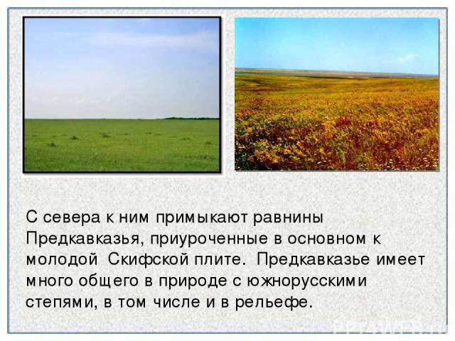 С севера к ним примыкают равнины Предкавказья, приуроченные в основном к молодой Скифской плите. Предкавказье имеет много общего в природе с южнорусскими степями, в том числе и в рельефе.