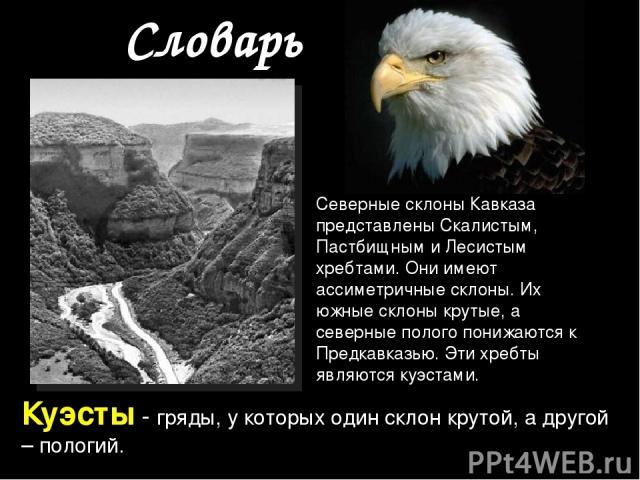 Словарь Куэсты - гряды, у которых один склон крутой, а другой – пологий. Северные склоны Кавказа представлены Скалистым, Пастбищным и Лесистым хребтами. Они имеют ассиметричные склоны. Их южные склоны крутые, а северные полого понижаются к Предкавка…