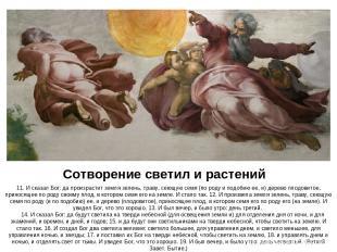 Сотворение светил и растений 11. И сказал Бог: да произрастит земля зелень, трав