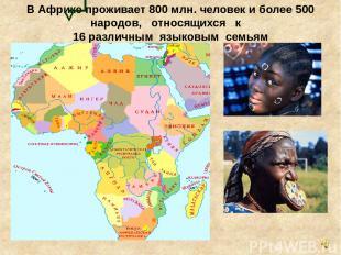 В Африке проживает 800 млн. человек и более 500 народов, относящихся к 16 различ