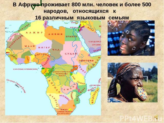 В Африке проживает 800 млн. человек и более 500 народов, относящихся к 16 различным языковым семьям