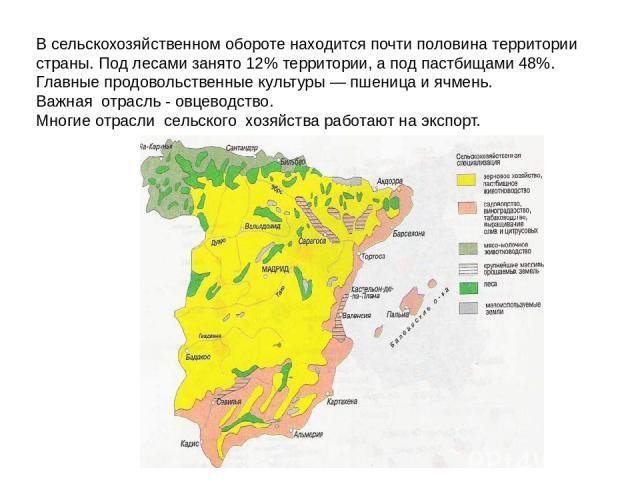 В сельскохозяйственном обороте находится почти половина территории страны. Под лесами занято 12% территории, а под пастбищами 48%. Главные продовольственные культуры — пшеница и ячмень. Важная отрасль - овцеводство. Многие отрасли сельского хозяйств…