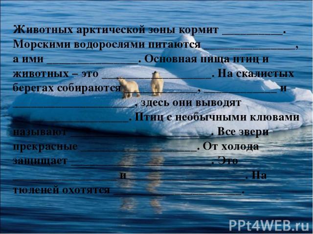 Животных арктической зоны кормит __________. Морскими водорослями питаются _______________, а ими _______________. Основная пища птиц и животных – это __________________. На скалистых берегах собираются ____________, ____________ и _________________…