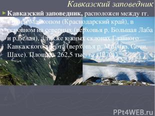 Кавказский заповедник Кавказский заповедник,расположен между гг. Сочи и Майкопо