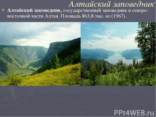 Алтайский заповедник Алтайский заповедник,государственный заповедник в северо-восточной части Алтая. Площадь 863,8 тыс.га(1967).