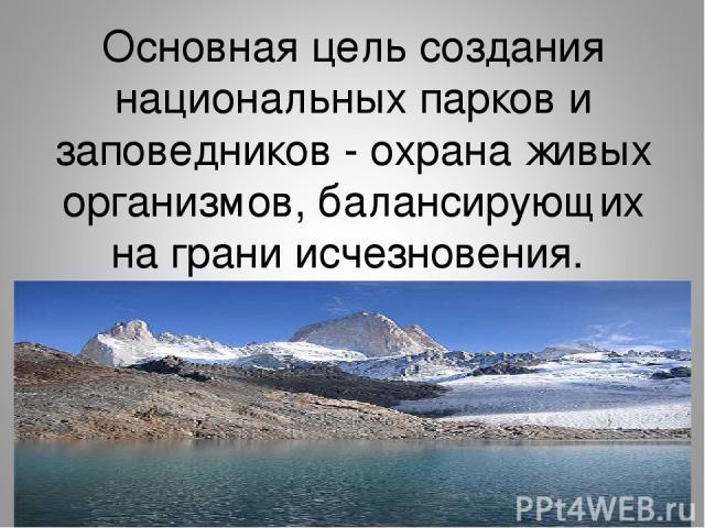 Основная цель создания национальных парков и заповедников - охрана живых организмов, балансирующих на грани исчезновения.