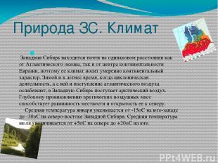 Природа ЗС. Климат Западная Сибирь находится почти на одинаковом расстоянии как