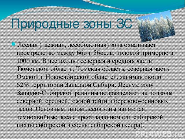 Природные зоны ЗС Лесная (таежная, лесоболотная) зона охватывает пространство между 66o и 56oс.ш. полосой примерно в 1000 км. В нее входят северная и средняя части Тюменской области, Томская область, северная часть Омской и Новосибирской областей, з…